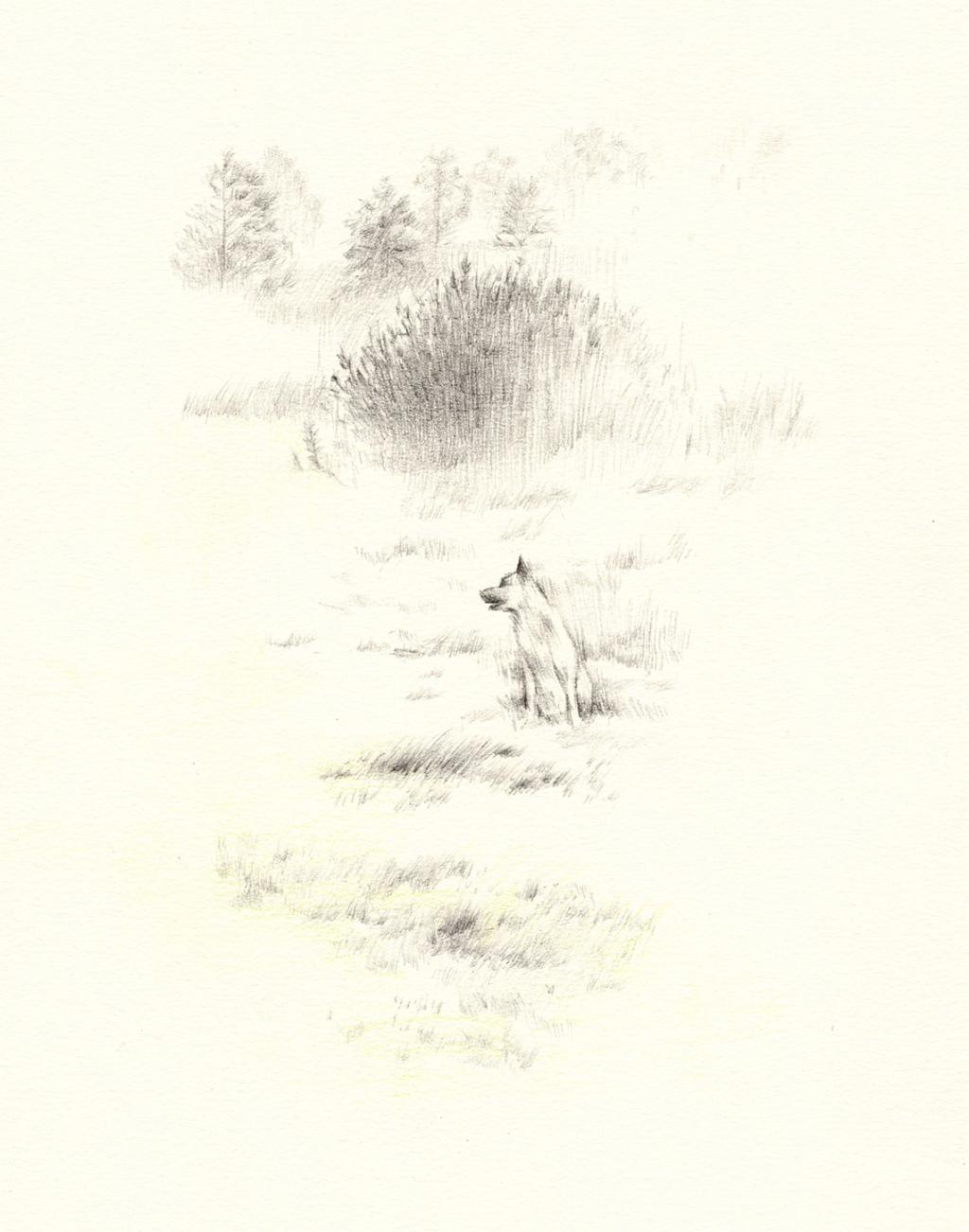 kokkosi sketchbook